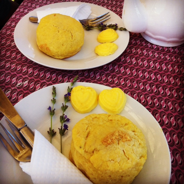 Scones with hand-churned butter in the middle of totally nowhere. The sign read 'Angora Rabbit Farm' but we only found hens and a cow.